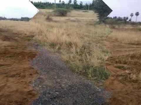 agricultural land for sale in india best agricultural land
