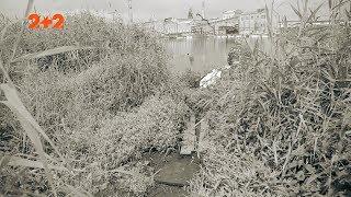 Яких монстрів зафіксували в українських озерах?