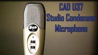 cad u37 mic review audio test comparison