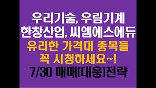 7/30 우리기술 우림기계 한창산업 씨엠에스에듀 매매전…
