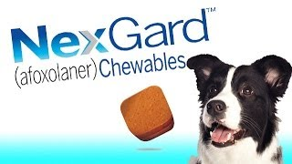 Nexgard Flea and Tick Chewable for Dogs by Merial/Frontline Vet Labs