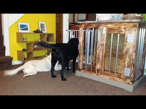 How to make Indoor Dog Kennel / Dog crate