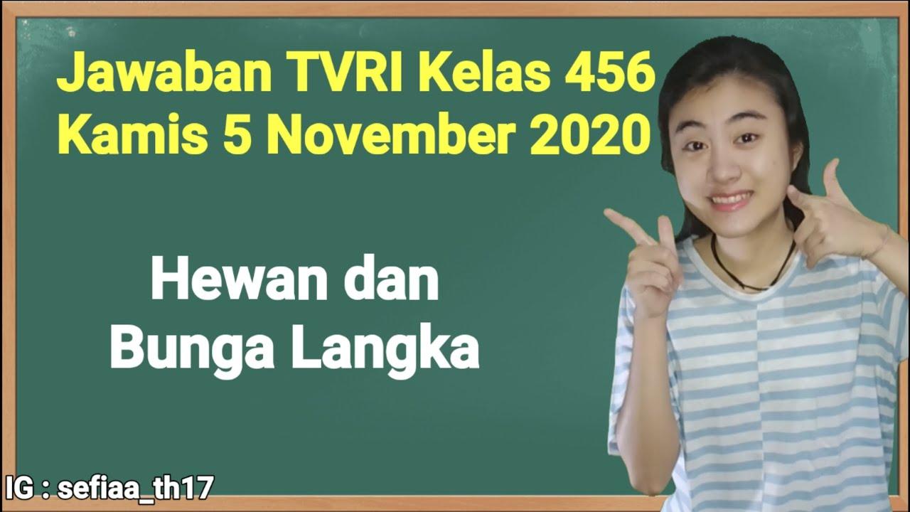 Kunci Jawaban TVRI Kelas 4-5-6 SD Kamis 5 November…