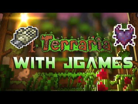 Terraria More Accessory Slots