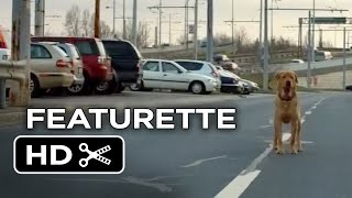 White God Featurette - The Story (2014) - Drama Movie HD