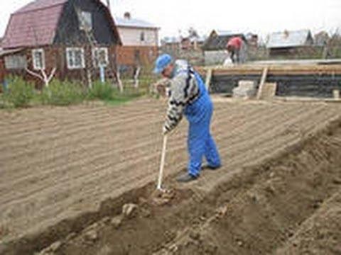видео: Как нужно копать огород. Уникальная лопата.