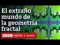 Qué son los fractales y cómo pueden ayudarnos a entender el universo | BBC Mundo