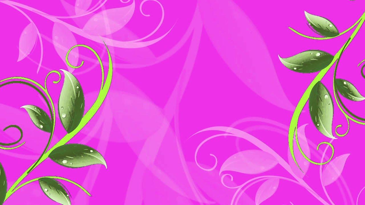 Flower Background Animation Full Hd Youtube