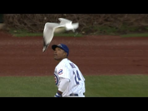 ARI@CHC: Byrd snags the final out among Wrigley birds