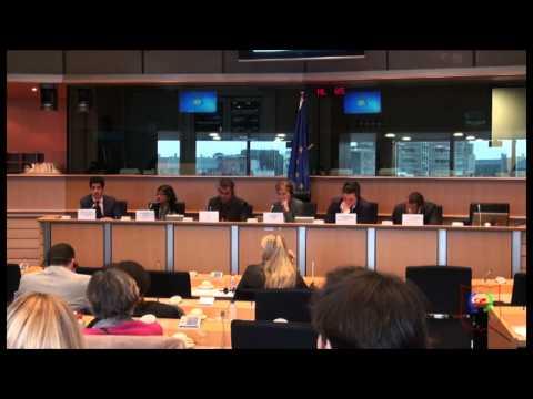 GNRD Conference on International Observation of Egypt's Constitutional Referendum - Challenges Ahead