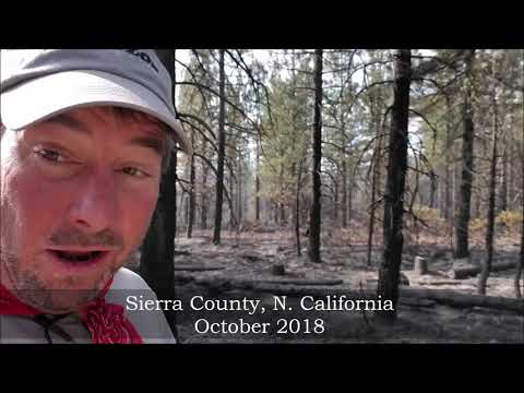 Prescribed Burn Sierra County, California