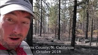 prescribed-burn-sierra-county-california