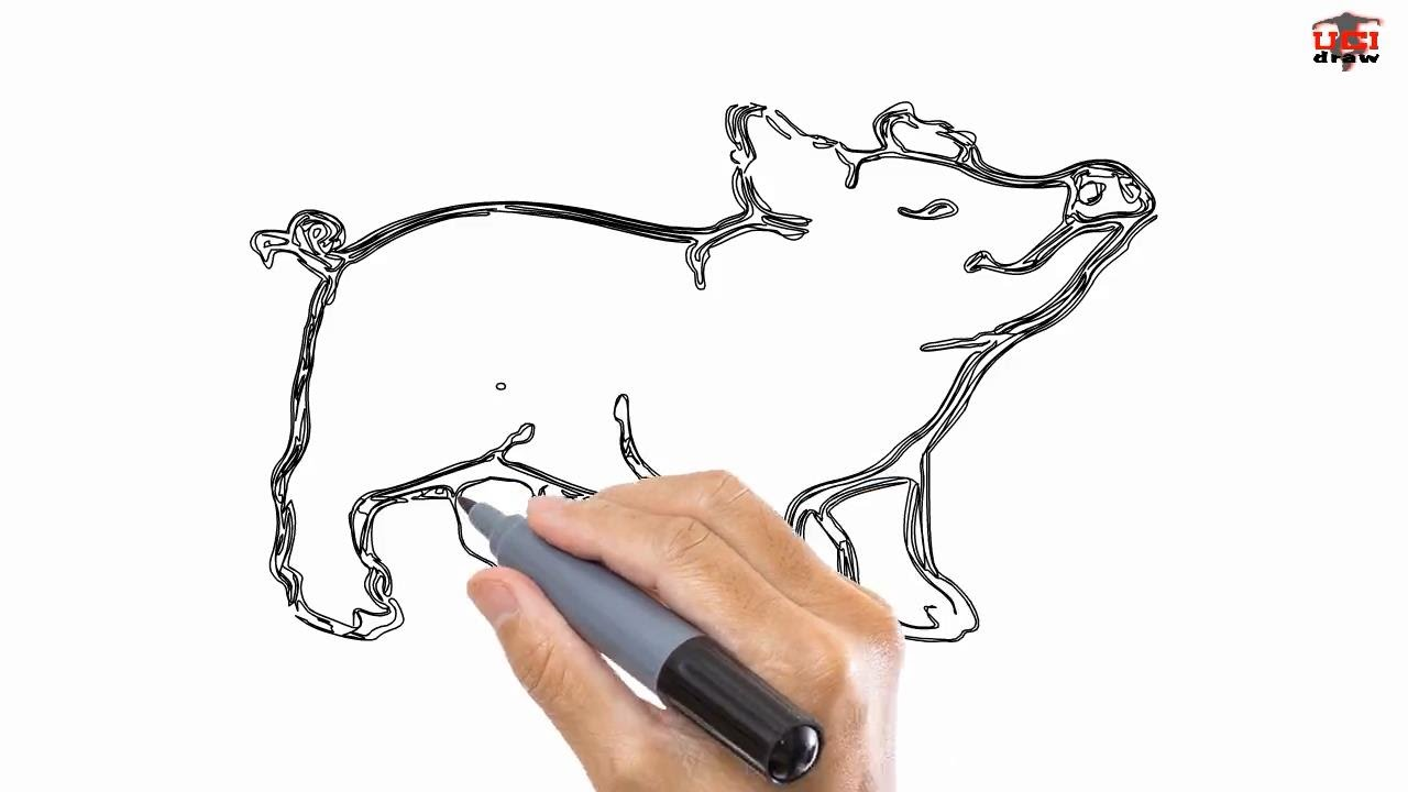 How to draw a pig easy drawing step by step tutorials for kids ucidraw youtube