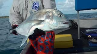 Мировая рыбалка Сезон 4 Морская рыбалка на Сейшельских островах