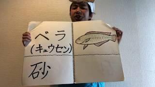 魚たちの夜の過ごし方を「レット・イット・ゴー」にのせて説明し鱒。 さかな芸人ハットリTwitter https://twitter.com/hattori95 オフィシャルブログ...