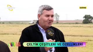 Çeltik Yetiştiriciliğinde Toprak Hazırlığı Yüzde Yüz Tarım Çiftçi TV