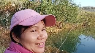 Về Châu Bình Câu Cá Khủng Làm món Tả Pí Lù Cá Tra