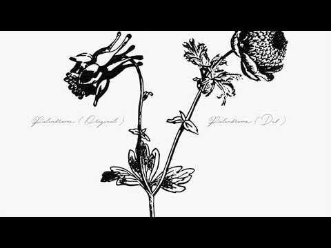 B. Shuang Hua - Palindrome (Dub)