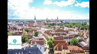 Tallinn Travel Guide - Exploring Unique Estonia