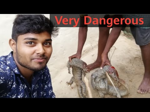 Very Dangerous... Video most viewing