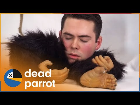 The End Of The World | Lee Kern's Celebrity Bedlam | Season 1 Episode 6 | Dead Parrot