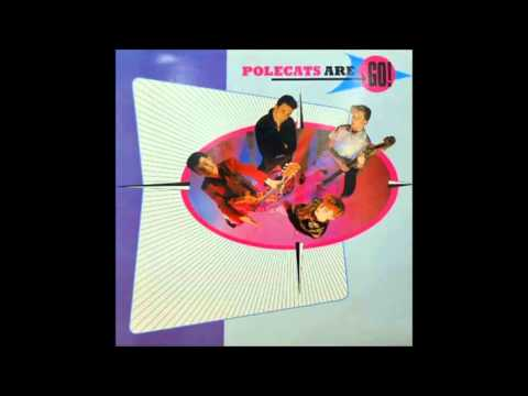 """The Polecats   Make a Circuit With Me 12""""MIX"""