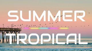 Roa - Summer Air (Vlog No Copyright Music - Free to Use and Download)