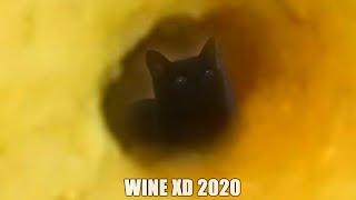 WINE XD 2020