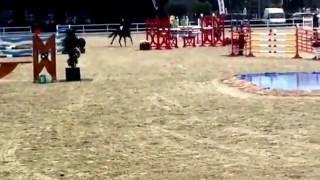 Billy Tortilla. Olivia Nova 2*. 1.40m