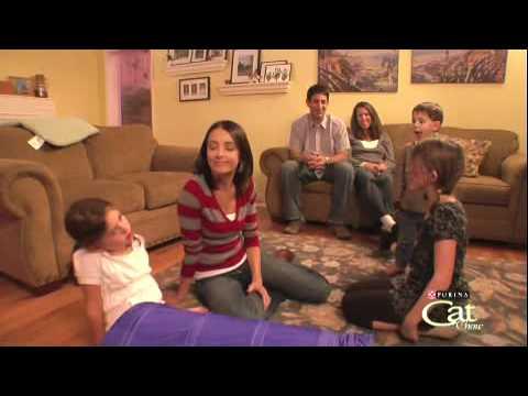 Housecat Housecall® Webisode  Pancake