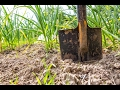 How to take a Soil Sample on your farm,
