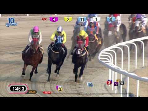 Shamrocker - Seoul Racecourse - March 19, 2017