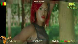 AFROBEAT CAMER  2016 Vol 3 - DJ JUDEX ft Mr Leo. X Maleya. Magasco