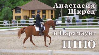 Анастасия Шкред и Парамаунт. Конный спорт. Выездка. ППЮ - 62.722%