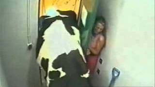 فيديو شاب يقتحم الحمام على بنت.
