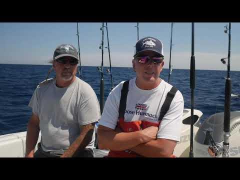 Cape Cod Fishing Report 7/9/19