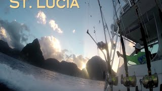 St Lucia Blue Marlin Fishing (Ep9 2015)