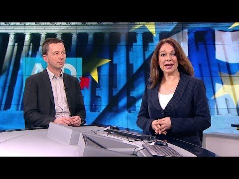 """WELT-INTERVIEW: """"Die AfD"""