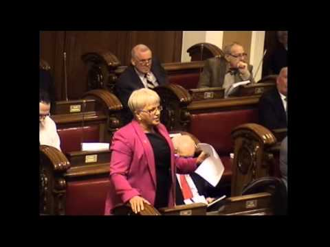 Cllr Ruth Patterson at the Flag Debate, Belfast City Council