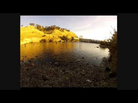 Salmon fishing in nimbus dam 2012 youtube for Nimbus dam fishing