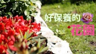 《幸福有家》 如何设计出轻松好保养的花园~不长杂草!草坪和花圃隔离!