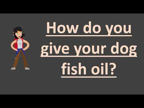 How Do You Give Your Dog Fish Oil ?
