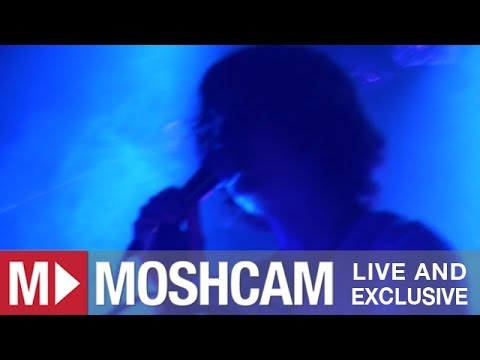 Animal Collective - Daily Routine | Live in Sydney | Moshcam