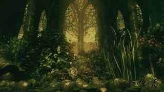 Diary of dreams - Malum - ( Elegies in darkness )
