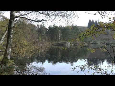 An Autumnal Day At Tarn Hows In The English Lake District