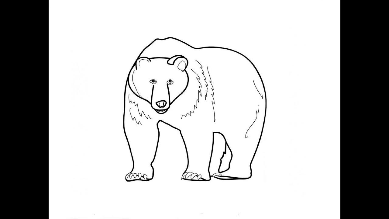Нарисовать ребенку медведя