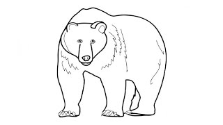 How to Draw a Bear / Как нарисовать медведя(Drawing Channel - https://www.youtube.com/channel/UCaZm6IvtL9zNeDwQi571asA/videos Канал для рисования ..., 2015-04-21T17:41:02.000Z)
