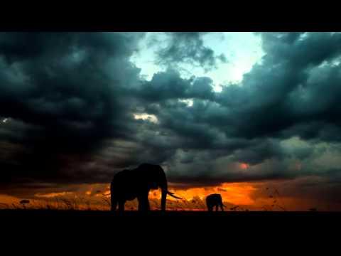 1 Hora de musica relajante con tambores africanos - African Drums (djembe, dunumba, instrumental)