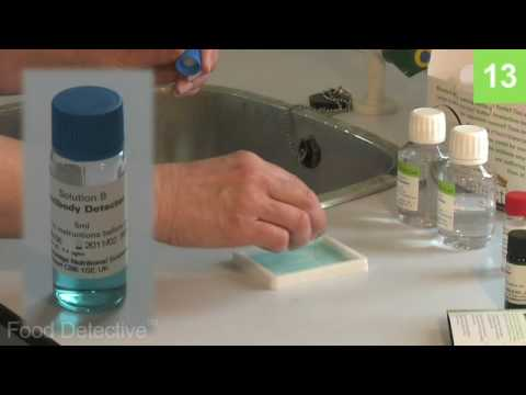 Food Detective Food Intolerance Test  Kit Instructional Video