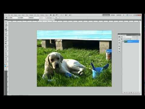 Как напечатать маленькие фотографии?